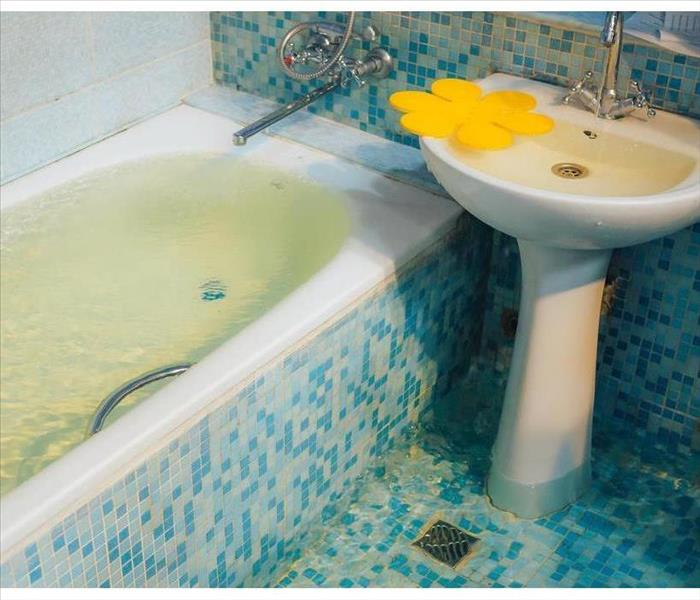Storm Damage 4 Things You Should Do if You Have Sewage Backup in Your Bathroom