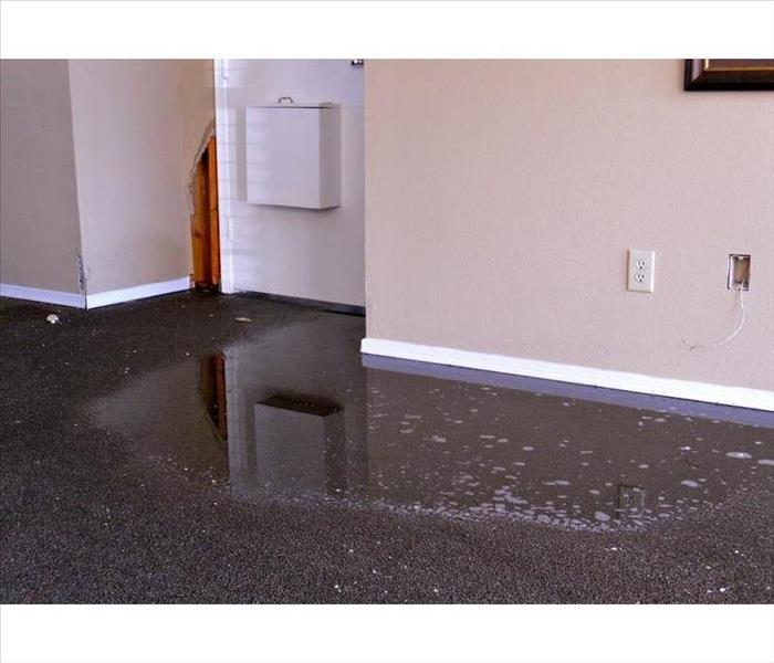 Water Damage Burst Pipes and Paperwork: The Basics of the Water Damage Claim
