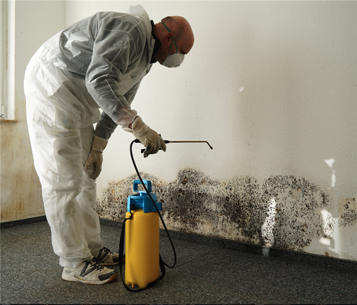 Why SERVPRO How To Protect Yourself From Mold