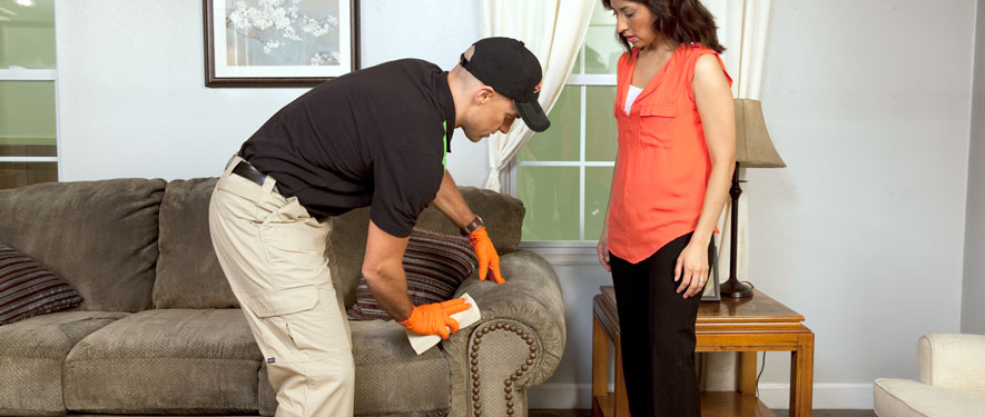 Renton, WA carpet upholstery cleaning
