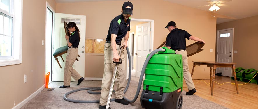 Renton, WA cleaning services