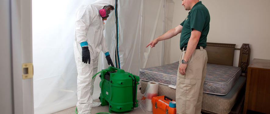 Renton, WA mold removal process